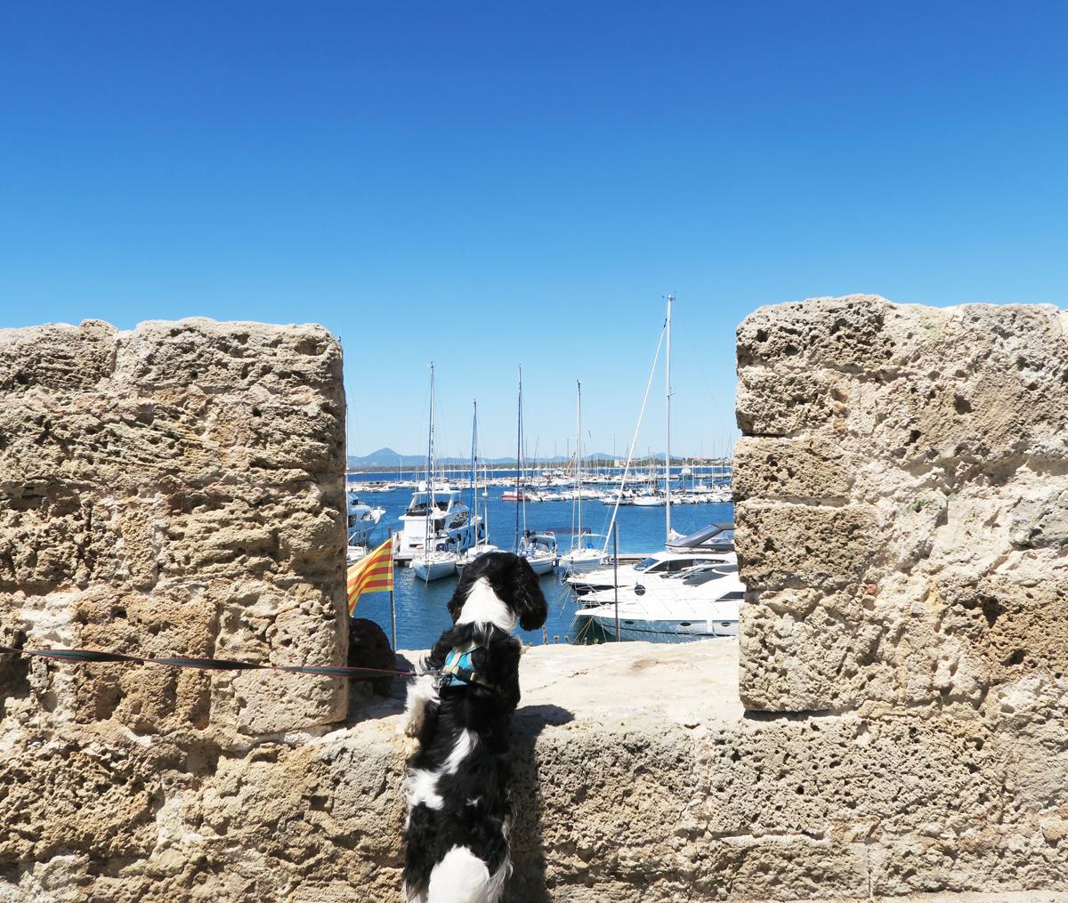 Sardinie 1