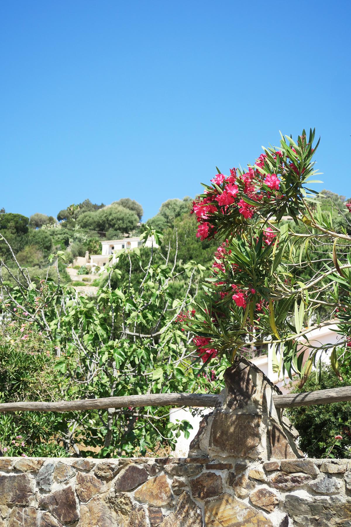 Sardinie 45