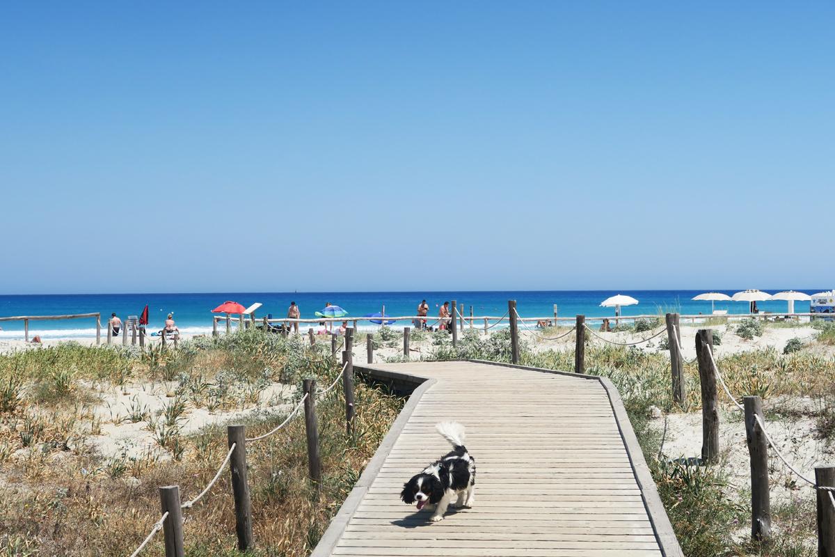 Sardinie 56