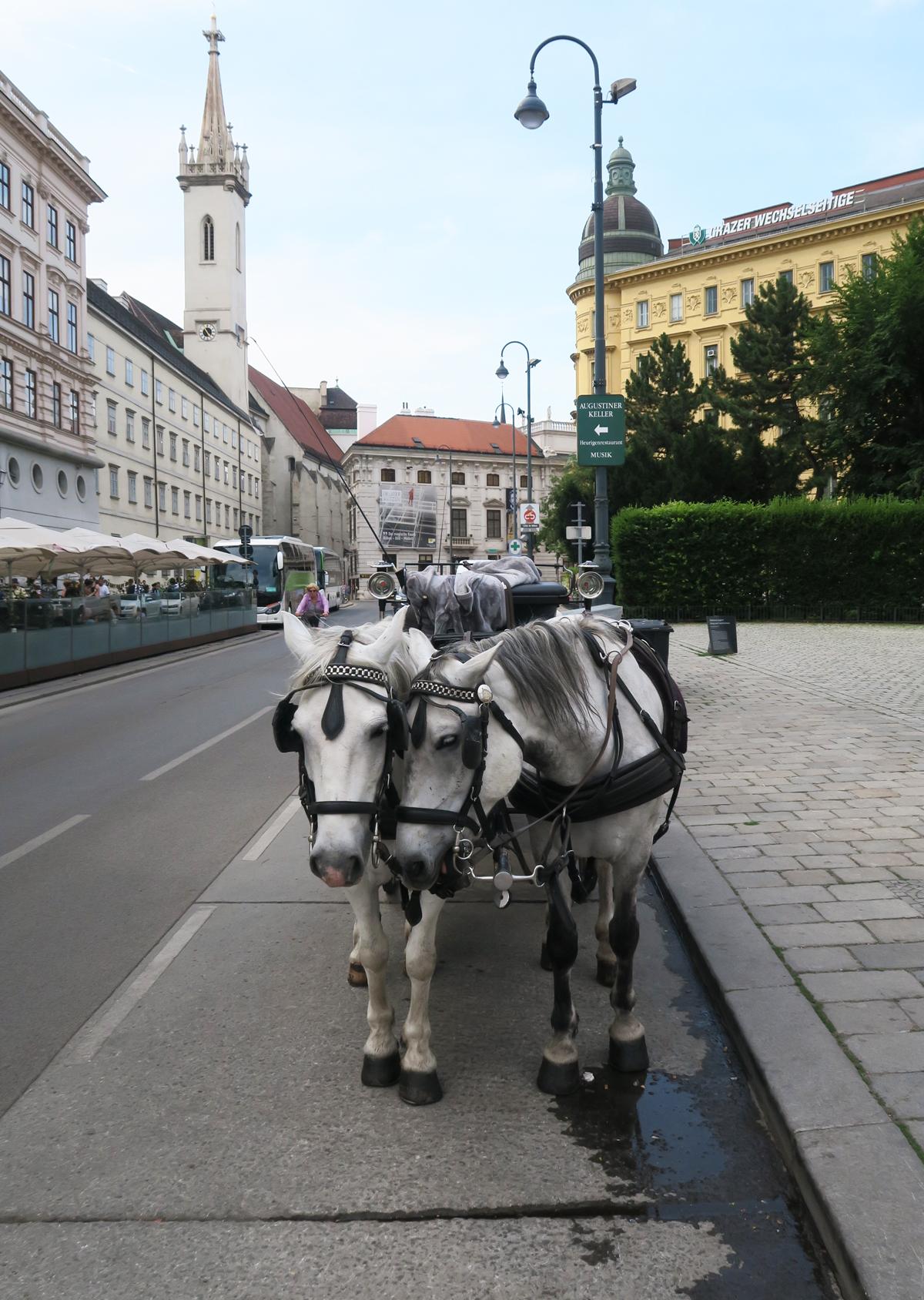 Oostenrijk 21.1.