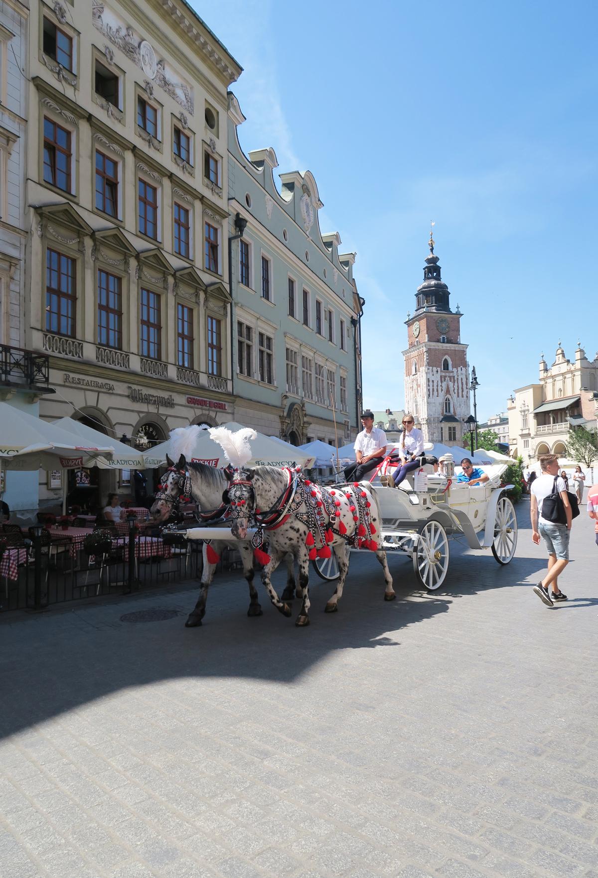 Polen 7