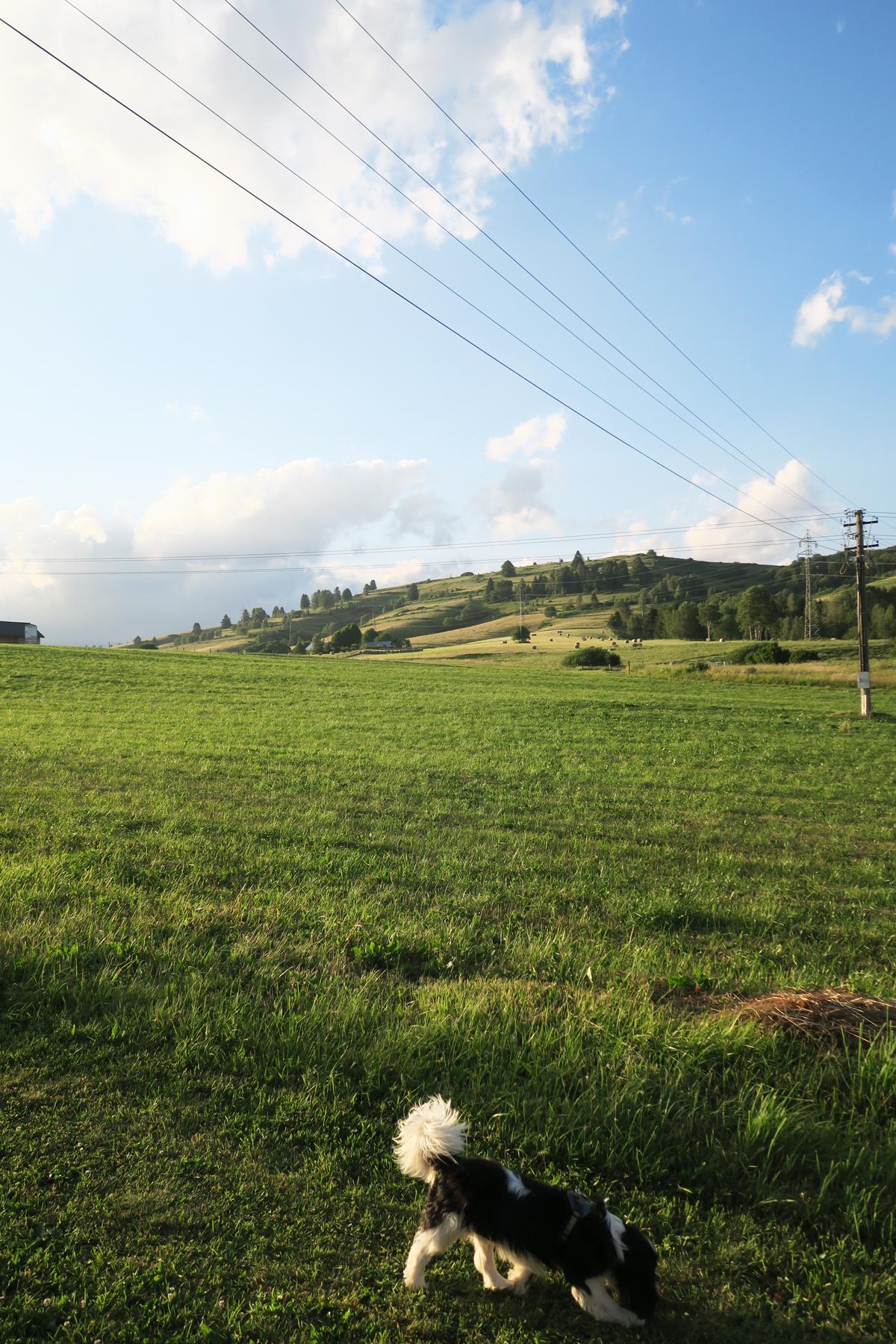 Slowakije 30