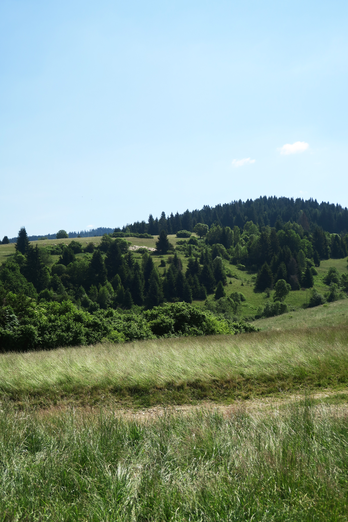 Slowakije 55