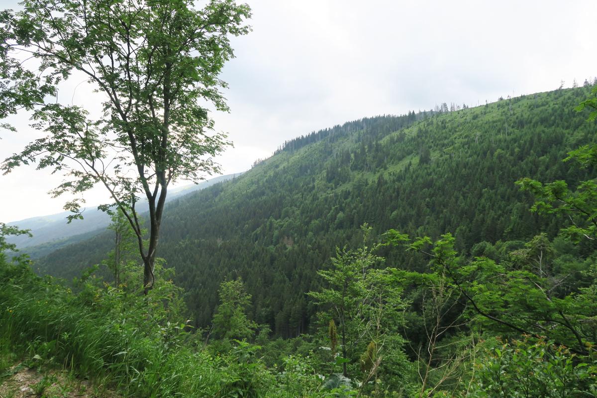 Slowakije 9