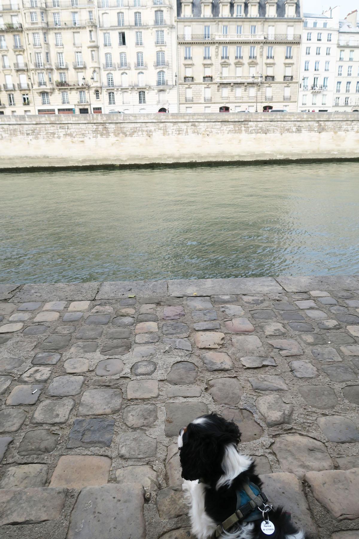 Parijs 83