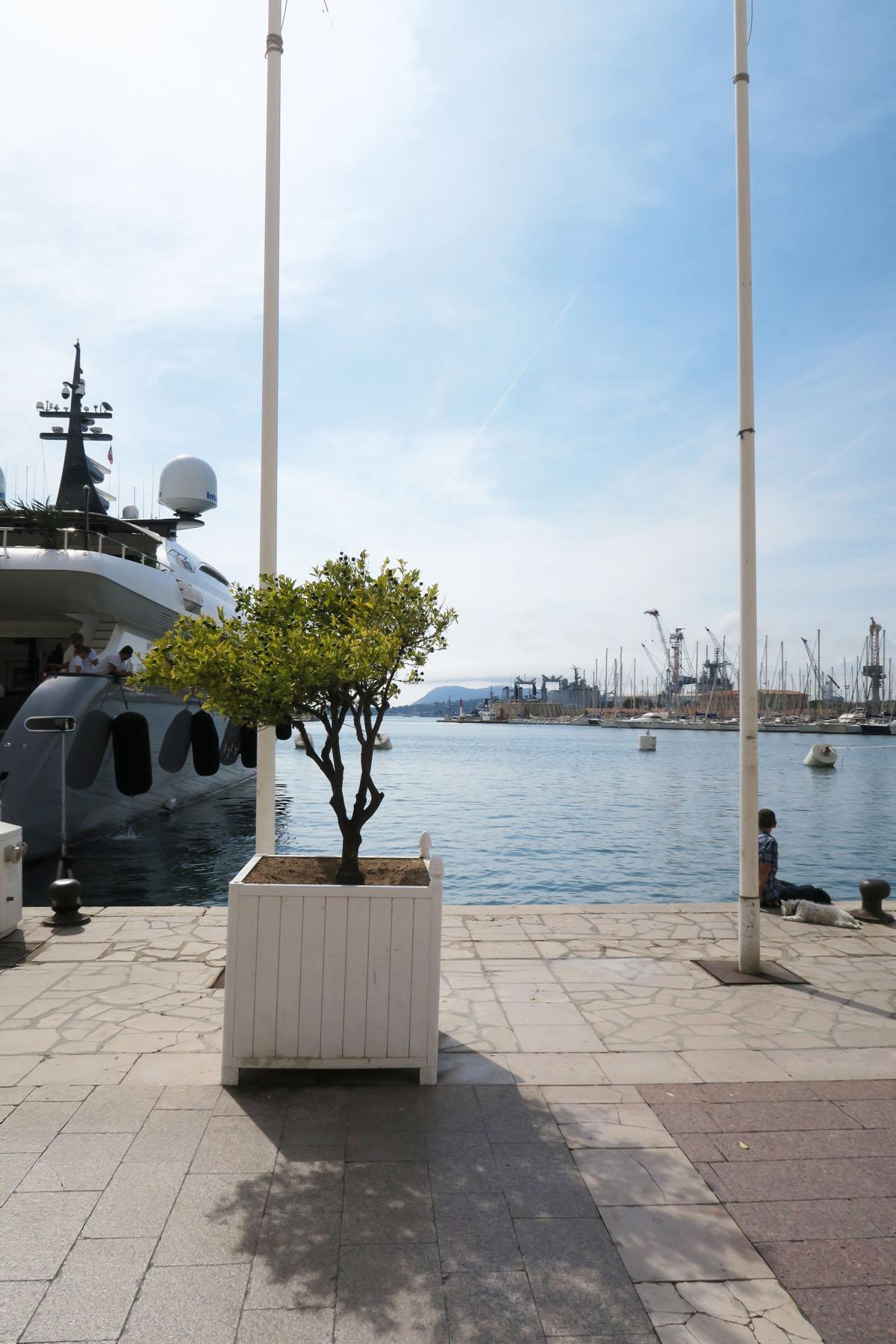 Toulon 59