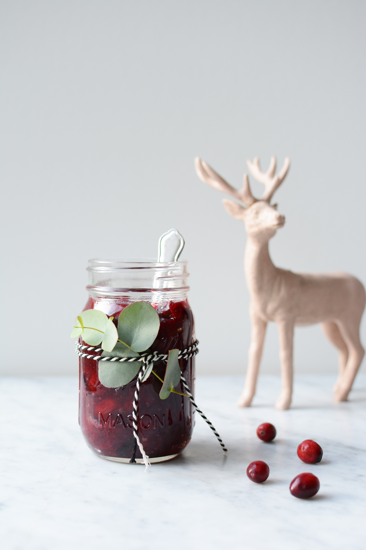 Cranberrycompote 7